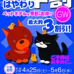 さくらステイ早割_GW2015|さくらペットクリニック|動物病院|鹿児島市