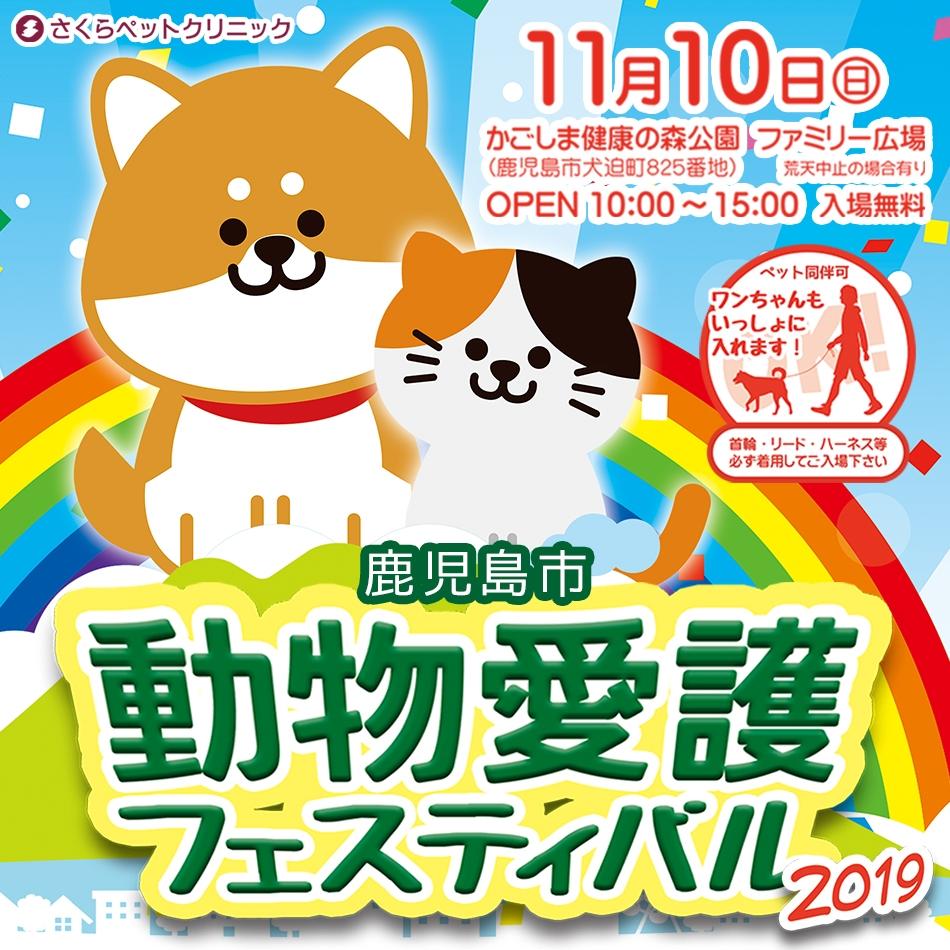 動物愛護フェス2019_バナー|さくらペットクリニック|動物病院|鹿児島市
