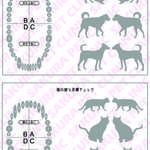 犬猫の歯と皮膚チェック表|さくらペットクリニック|動物病院|鹿児島市