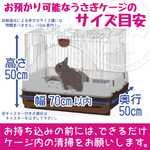 うさぎ用ケージのサイズ目安|さくらペットクリニック|動物病院|鹿児島市