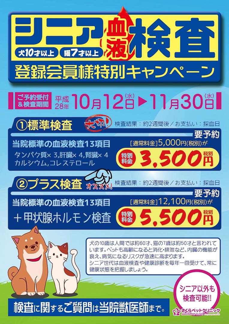 シニア世代血液検査キャンペーン2016|さくらペットクリニック|動物病院|鹿児島市