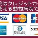 クレジットカード決済 さくらペットクリニック 動物病院 鹿児島市