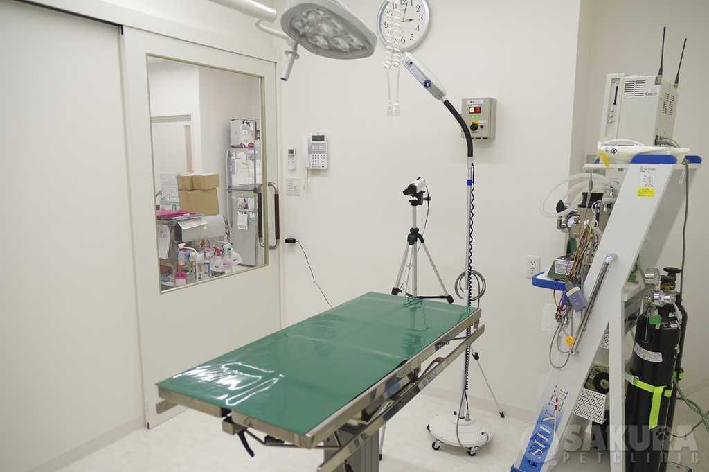 オペ室_spc2|さくらペットクリニック|動物病院|鹿児島