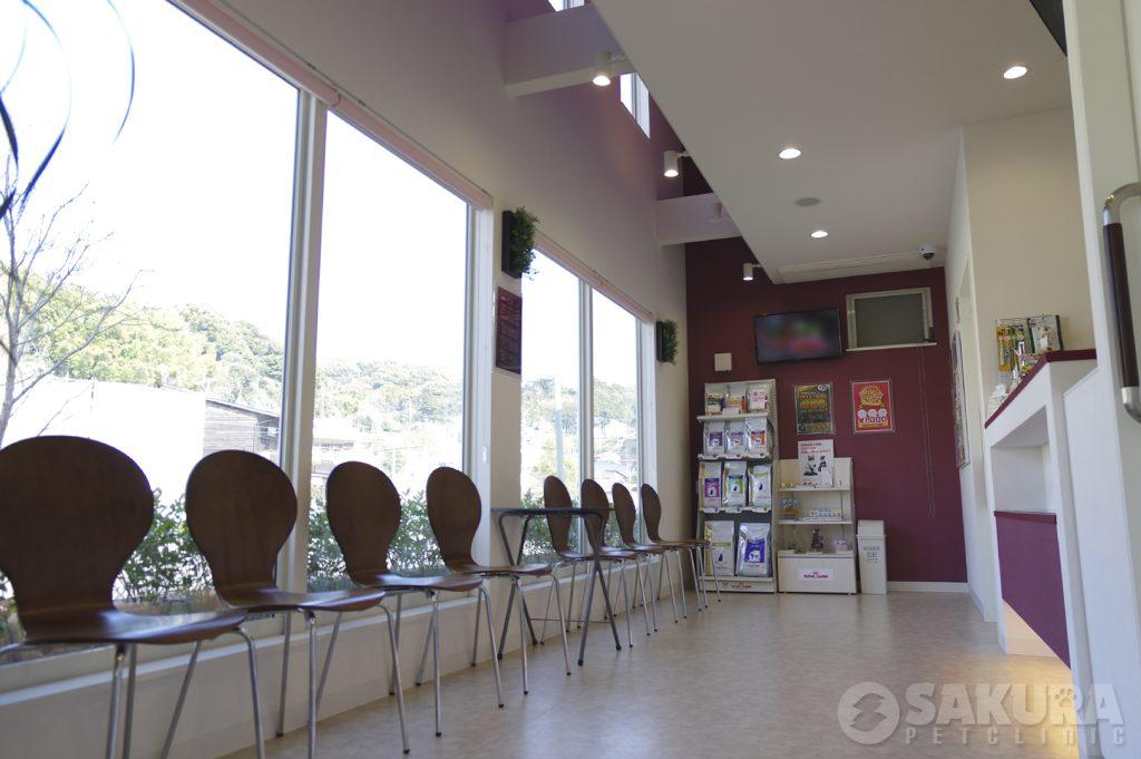 待合スペース さくらペットクリニック 動物病院 鹿児島