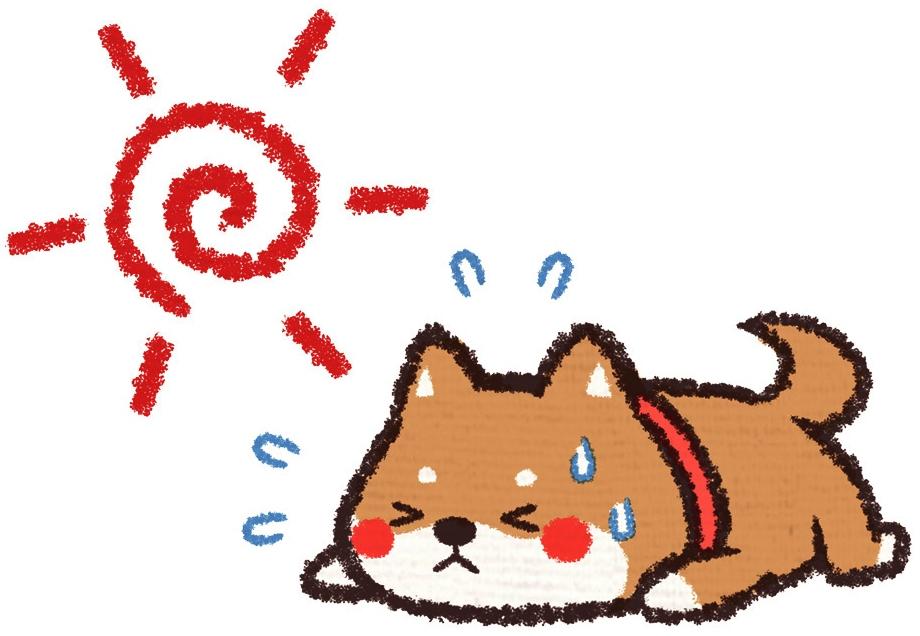 熱中症に注意して下さい|さくらペットクリニック|動物病院|鹿児島市