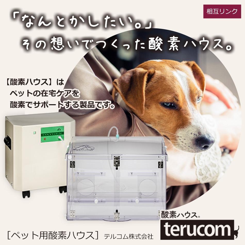 テルコム株式会社[相互リンク広告]|さくらペットクリニック|動物病院|鹿児島市