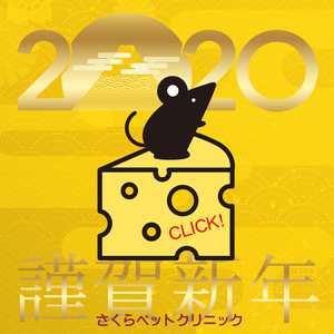 2020年【令和二年】新年のごあいさつ|さくらペットクリニック|動物病院|鹿児島市