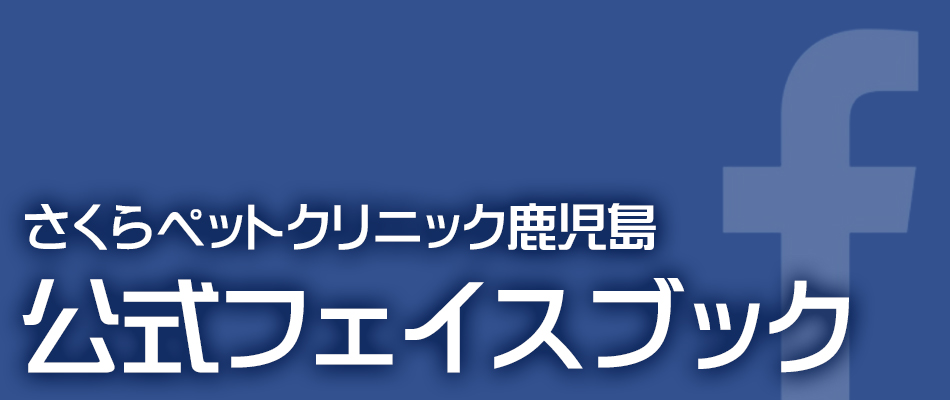公式フェイスブック|さくらペットクリニック|動物病院|鹿児島市