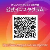 公式インスタグラムQRC|さくらペットクリニック|動物病院|鹿児島市
