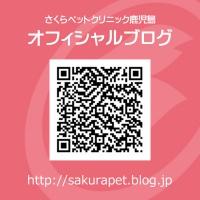 オフィシャルブログQRC|さくらペットクリニック|動物病院|鹿児島市
