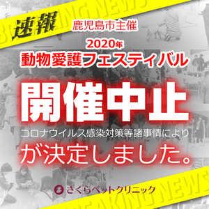 鹿児島市動物愛護フェスティバル2020中止決定 さくらペットクリニック 動物病院 鹿児島市