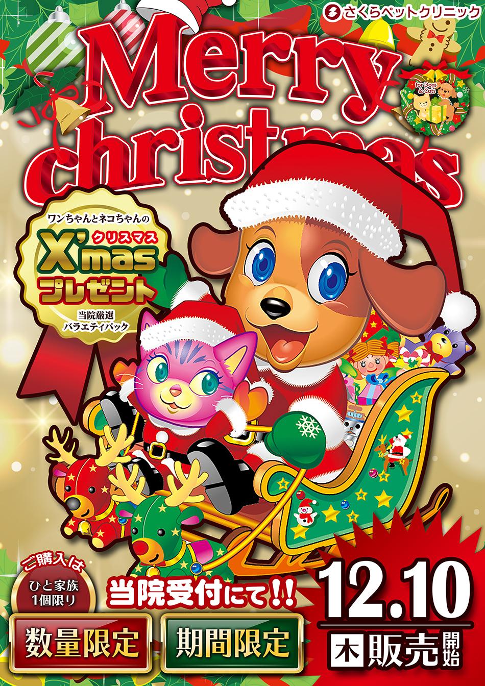 クリスマスプレゼント さくらペットクリニック 動物病院 鹿児島市